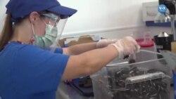 Engellileri İş Dünyasına Kazandıran Programlar