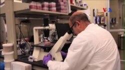 Các nhà khoa học gần tìm ra phương cách chữa trị bệnh AIDS