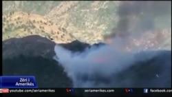 Zjarret dhe mbrojtja e natyrës
