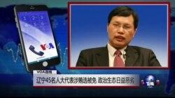 VOA连线(胡星斗):辽宁45名人大代表涉贿选被免 政治生态日益恶劣