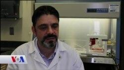 Türk Uzman Kanser İlaçlarını Test Etmek İçin Biyoyazıcıyla Tümör Üretiyor
