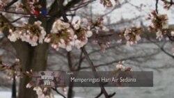 Warung VOA: Memperingati Hari Air Sedunia (1)