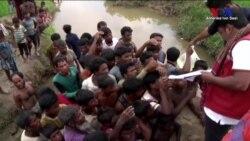 Bangladeş'e Kaçan Arakanlı Müslümanların Sayısı 90 Bine Yaklaştı