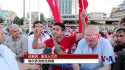 土耳其总统被批利用政变打压异己