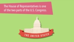 What Is the US House of Representatives