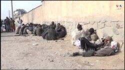 جمع آوری ۶۵ فرد معتاد در هرات
