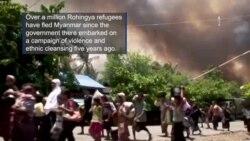 Highlighting the Plight of the Rohingya