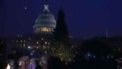 Capitol Tree Lighting