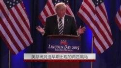 美总统竞选早期出现的两匹黑马