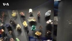 Сокровища в Музее естествознания