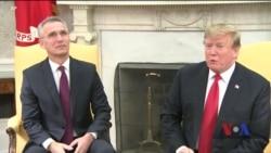 Як пройшла зустріч Трампа і Столтенберґа. Відео