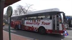 萨德之怒:中国旅游禁令冲击韩国