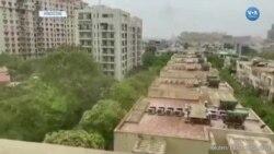 Hindistan'da Başkentin Eteklerinde Çekirge Sürüsü