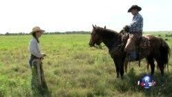 走进美国:当个牛仔过一生