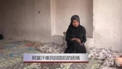 从苦到更苦:阿富汗难民回国后的困境