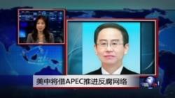 VOA连线:美中将借APEC推进反腐网络