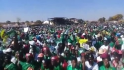 Zanu PF Activists Singing At Election Campaign Rally