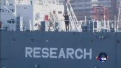 日本恢复科研捕鲸 引起国际愤怒