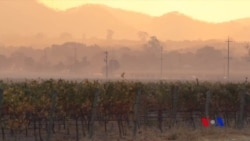 加州野火威脅居民 是走是留難以定奪