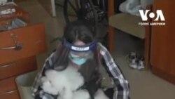 Собаки приносять любов у будинки для літніх людей під час пандемії. Відео