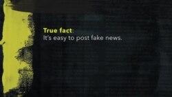 Explainer: Fake News