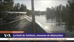 La forêt de Vohibola menacée de destruction