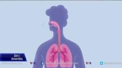 Si ndikon koronavirusi te organizmi ynë?