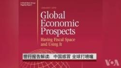 世行报告解读:中国感冒 全球打喷嚏