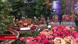 Chuyến tàu Giáng sinh trong Vườn Bách thảo Hoa Kỳ