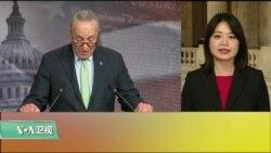 VOA连线(李逸华):参议院通过决议案终止特朗普总统国家紧急状态