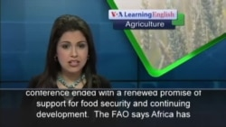 UN Officials describe Africa as Most Food-Insecure Continent