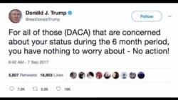 Trump Deportations