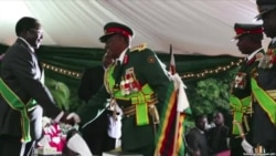 Will the Zimbabwe National Army Stage A Coup?