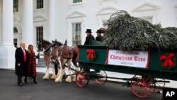 Дональд Трамп и Мелания Трамп встречают рождественскую елку в Белом доме. Вашингтон, 19 ноября 2018