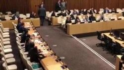 ONU: Cuba bloquea sesión sobre prisioneros políticos