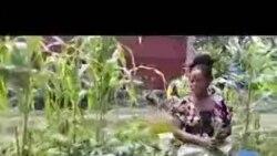 Putulu ya moto ya volcan ezali likama mpo na bavandi ya Goma