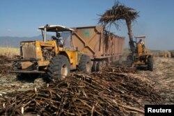 Un camión es carga con caña de azúcar en una plantación. Foto: Archivo.