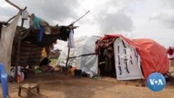 Flooding Displaces, Isolates Hundreds of Thousands of Somalis
