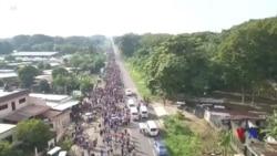 特朗普:全力阻止洪都拉斯大篷車移民