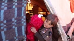 Elmo and Friends Lead Education Effort for Refugee Children