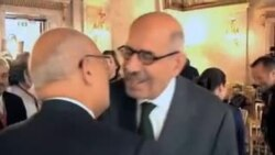 محمد البرادعی به عنوان صدراعظم این کشور تعیین نشده است.